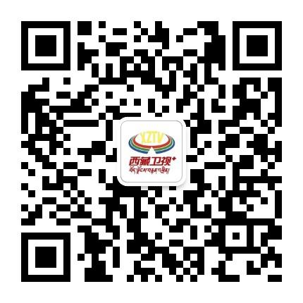 西藏卫视+