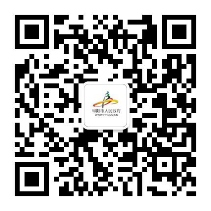 阜阳市人民政府发布