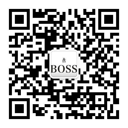 BOSS管理策略