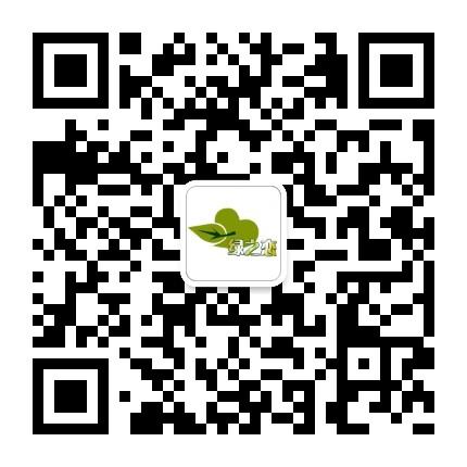 竹溪绿之恋