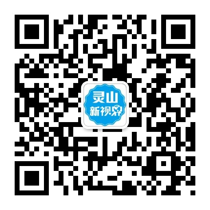 灵山新视界网