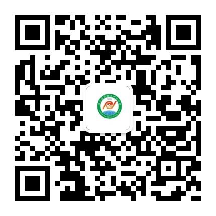 洛川东小资讯