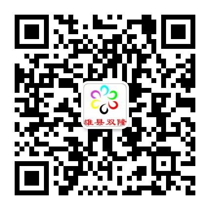 雄县双隆商厦