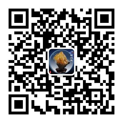 江门市台山玉石协会