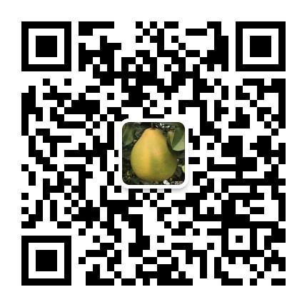 广西容县沙田柚