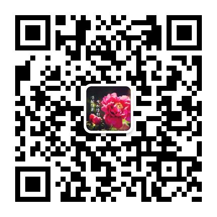 洛阳牡丹文化诗社