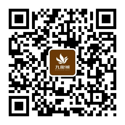 威海九龙城购物广场