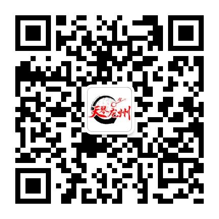 天琴龙州网
