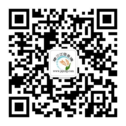 建三江信息港