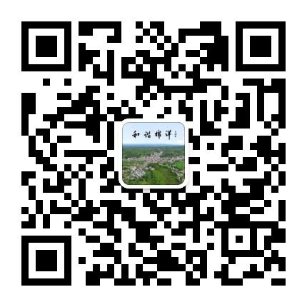 五华县棉洋镇人民政府
