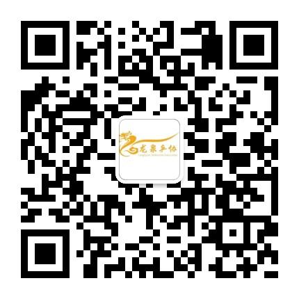 龙泉驿乒乓球协会