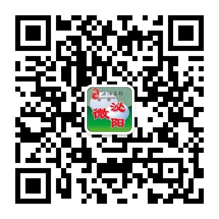 泌阳在线网站