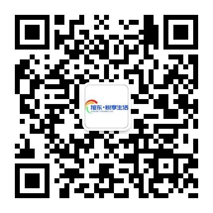 阳城旭东公司