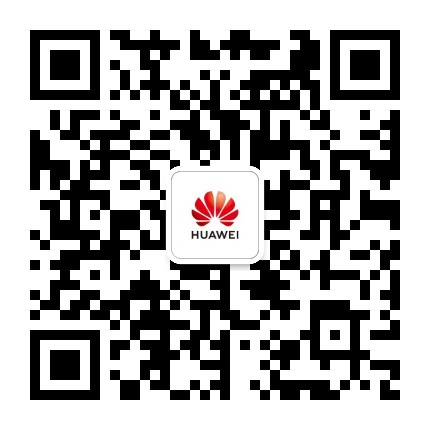 华为企业业务中国