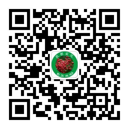陇南武都安化镇