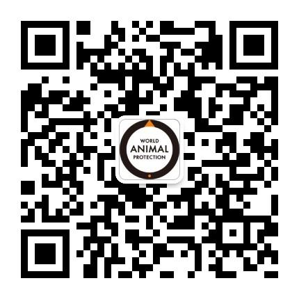 世界动物保护协会