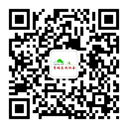 晋城市长跑协会
