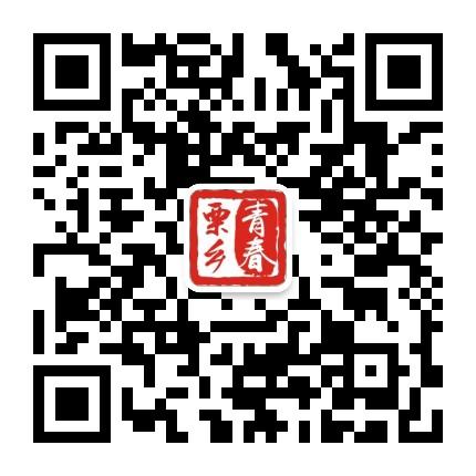 共青团镇安县委