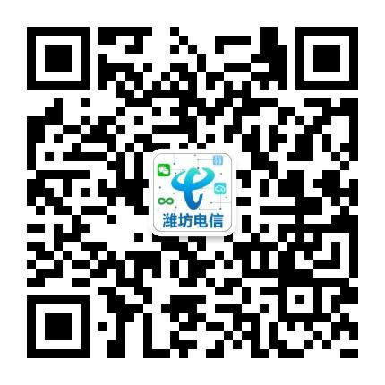 中国电信潍坊分公司