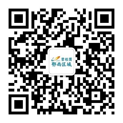碧桂园荆州片区
