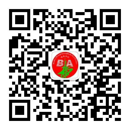 容城博奥学校
