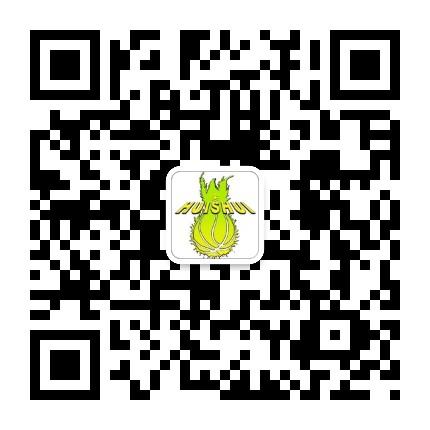 惠水县篮球协会