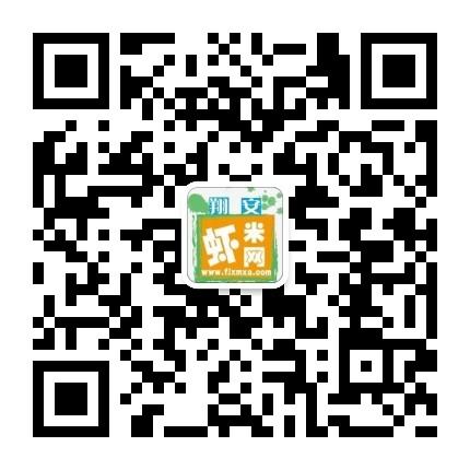 翔安虾米网