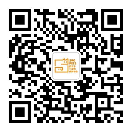 武汉市小动物保护协会