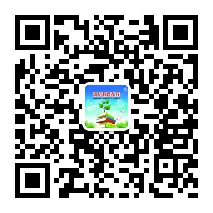 嵩县教育在线