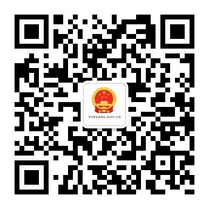 岳阳市政府网