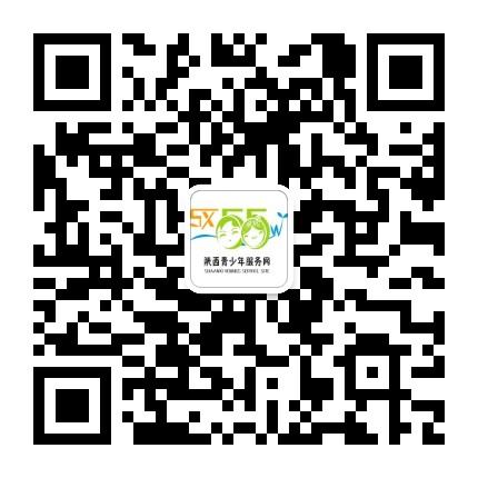 陕西青少年服务网