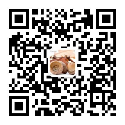 深圳市艺精装饰材料有限公司
