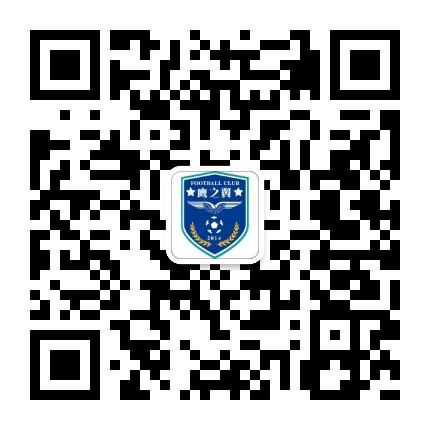 鹰之翼FC