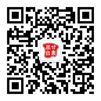 甘肃高台网