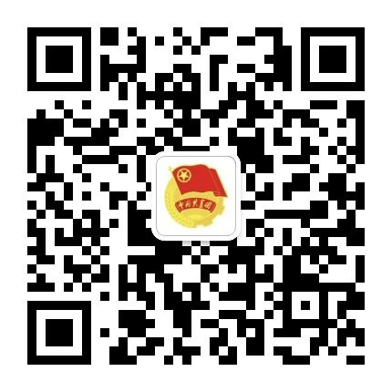 天津电子信息学院团委