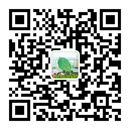 连云港市苍梧小学