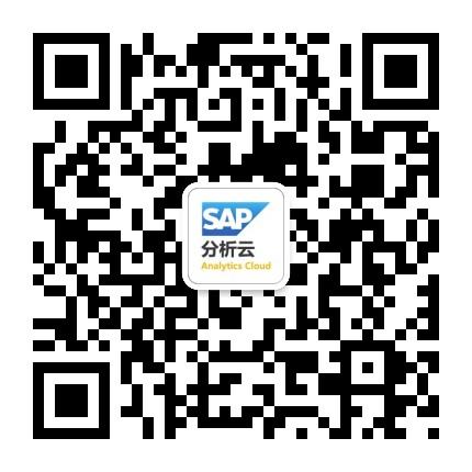 SAP商务分析全知道