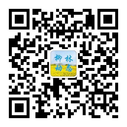 陇南徽县柳林镇
