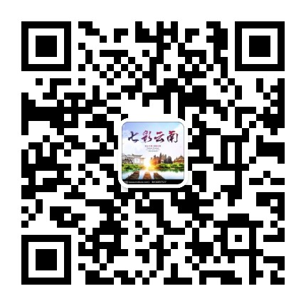 腾冲民众服务平台