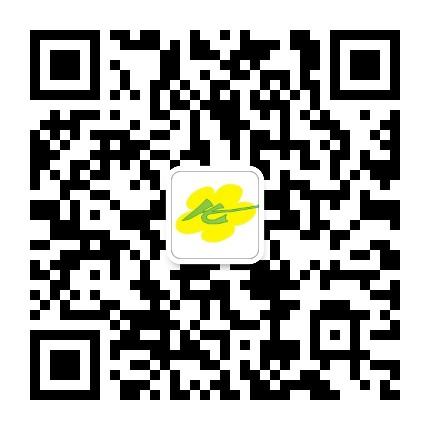 阳江市华泰国际旅行社有限公司