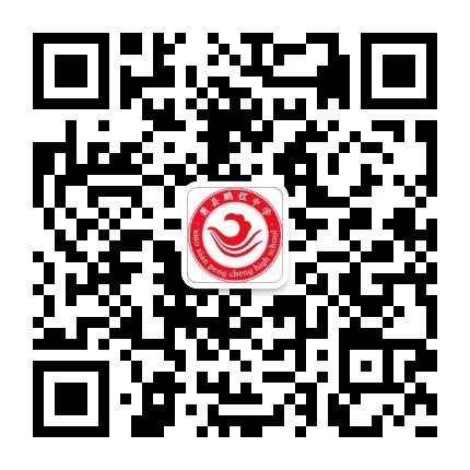 安徽省萧县鹏程中学
