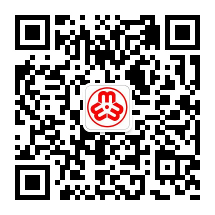 陇南康县妇联