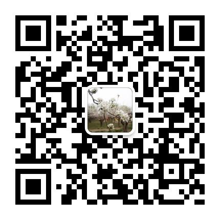 嘉峪关酒泉资讯