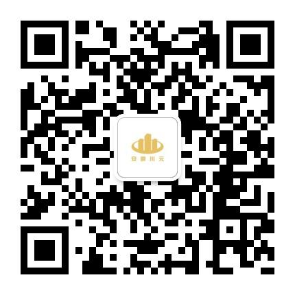 安徽川元投资有限责任公司
