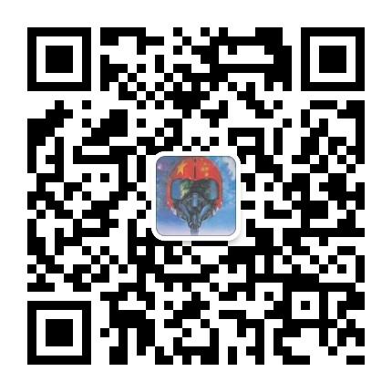 虹摄库尔斯克军事资讯