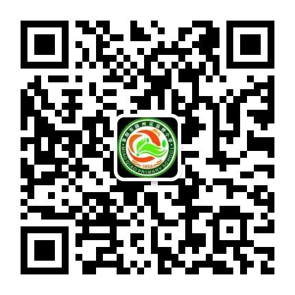 阜阳市苗桥小学