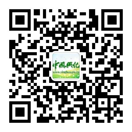 中国兴化政府网