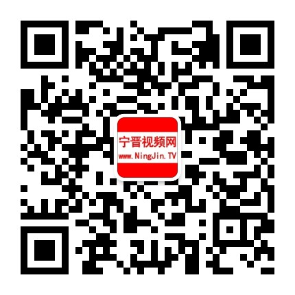 宁晋视频网