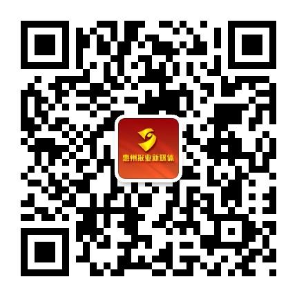 今日惠州网