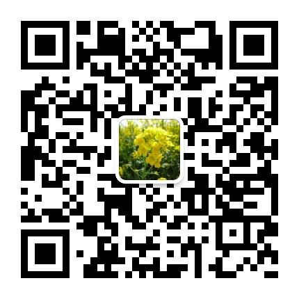 微信公众号 乐乐大生活 leniu9334